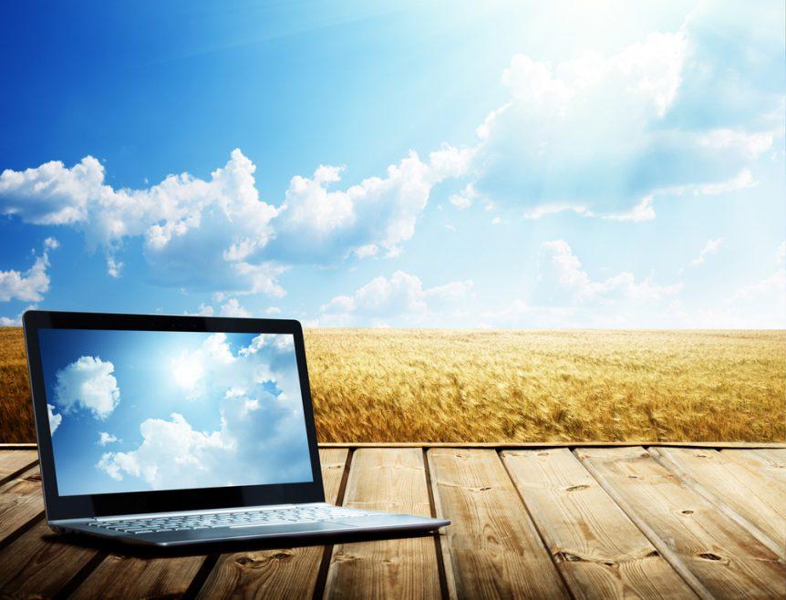 Understanding eCommerce Platforms for Online Produce Sales