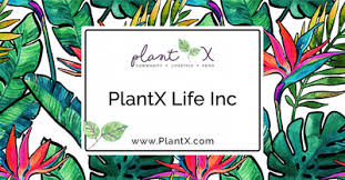 Canadian Plant-Based 'Amazon' PlantX Expands Its Vegan E-Commerce Platform To U.S.