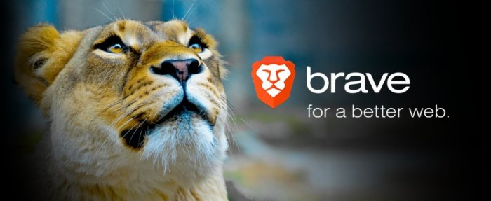 Brave Launches Google Search Competitor